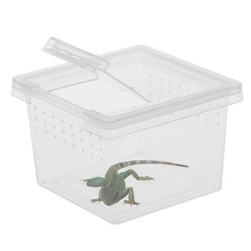 Mini Portable Plastic Transparent Terrarium For Reptile Lizards Chameleon Scorpions Ants Reptiles Small Pets Outdoor Box PT0813