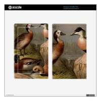 Colorful vintage painting of ducks skins for kindle fire
