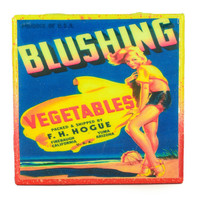 Blushing Vegetables Brand - Vintage Citrus Crate Label - Handmade Recycled Tile Coaster