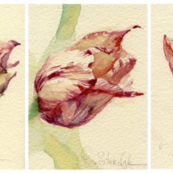 "Watercolor flower ACEO (3x) ""Tulip"", watercolor painting, Print,  Artist Trading Card, archival watercolor paper"