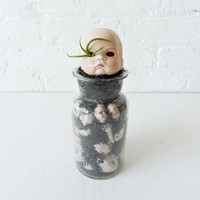 Cranky No Play Baby - Vintage Bisque Doll Air Plant Garden