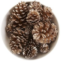 Glittered Pinecone Bowl Filler