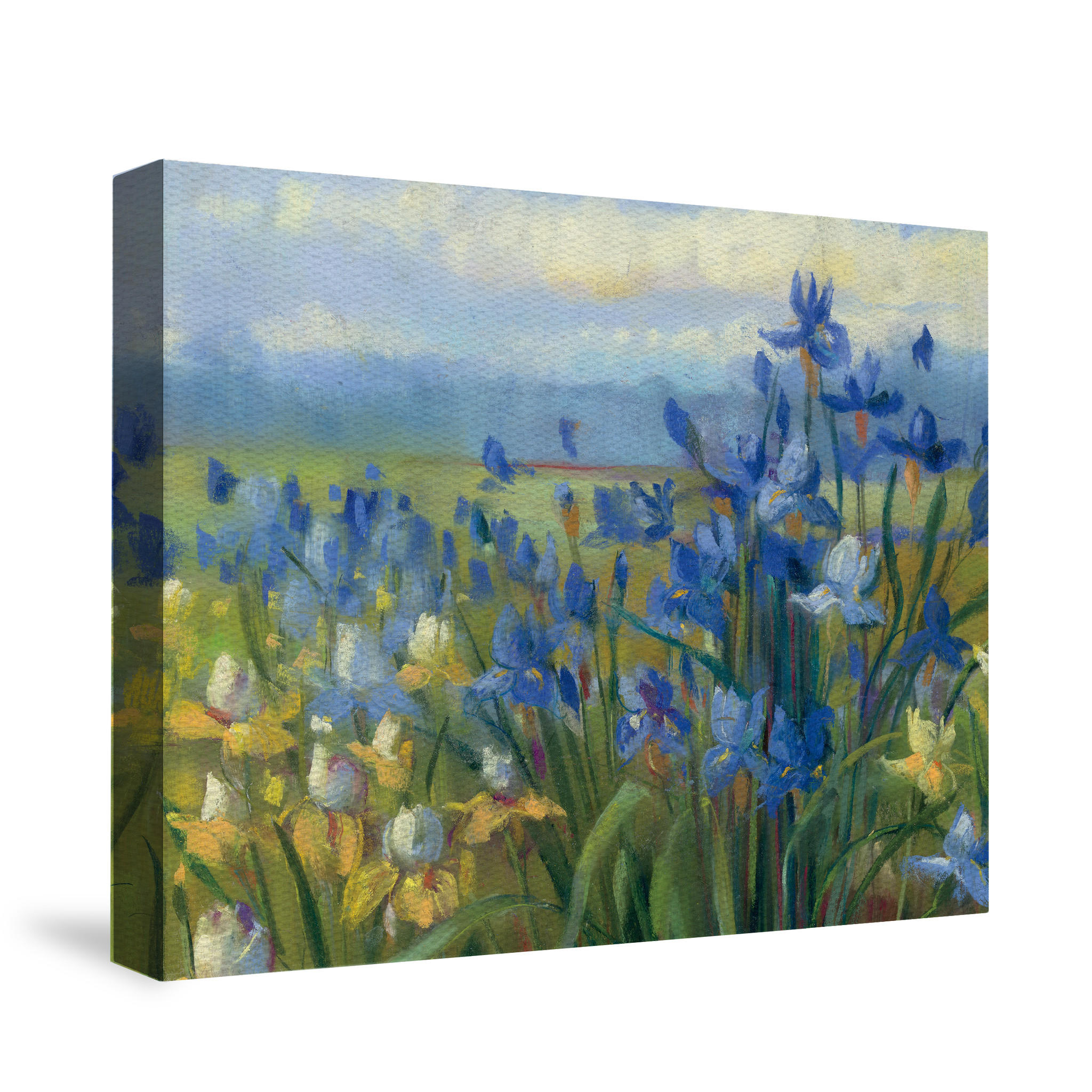 Blue And Yellow Flower Field Canvas Wall From Laural Home