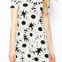 White Daisy Print Short Sleeve A Line Mini Dress