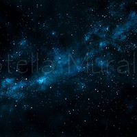 Glow in the Dark Star Ceiling Mural - The Southern Cross - Removable – Reusable - 6 Ft x 6 Ft