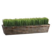 "Grass in Wood Planter - 8""H x6.5""D x24.25""W"