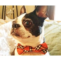 Plaid Orange and Black Dog Bow tie attached to collar, Dog lovers wedding