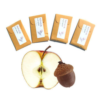 4 Apples Oak Type Scented Sachets - DIY Custom Favors - Home Fragrance - Kraft Gold - Autumn Acorn - Modern Rustic