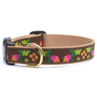 Chocolate Floral Dog Collar