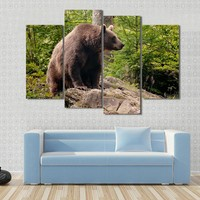 Brown Bear Sitting On The Rock focus On The Eye Canvas
