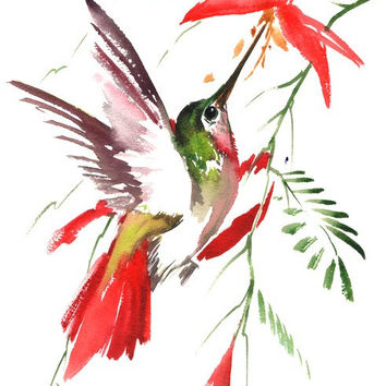 Hummignbird painting, 14 X 9 in, original watercolor art, flying hummingbird, red flowers, abstract