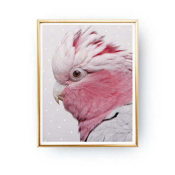 Parrot Print, Pink Parrot Poster, Parrot Illustration, Bird Print, Modern Home Decor, Bird Wall Art, Nursery Decor, Animal Art, 11x17 print