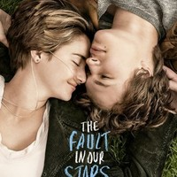 """The Fault in Our Stars Poster (Thick) 22"""" x 34"""" (Shailene Woodley, Ansel Elgort, Nat Wolff)"""