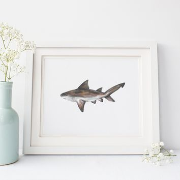 Bull Shark Wall Art Print