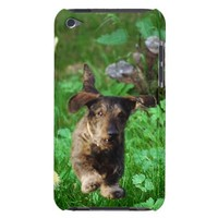 Dachshund Photo iPod Touch Case from Zazzle.com