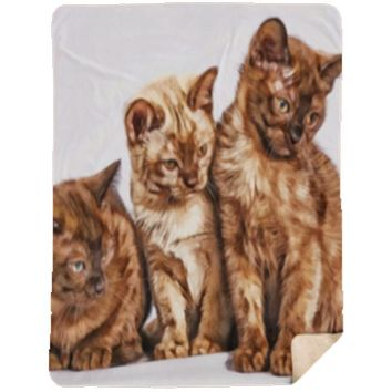 Cats, Dogs or Wild Animal Prints On Soft, Silky And Warm Large Sherpa 60 x 80 Perfect Cuddling Blanket