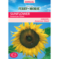 Shop Ferry-Morse 1 Gram(S) Sunflower Seeds (L0000) at Lowes.com