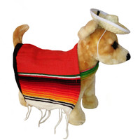 Mexican Dog Serape Costume