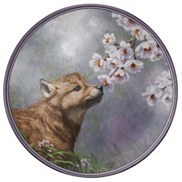 Wolf Pup and Flowers Porcelain Plates