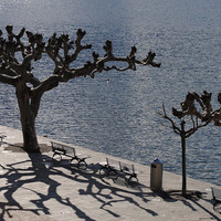Lakeside Photograph – Travel Photograph Contemporary Lakeside Street Furniture in Sleek Silver Metal & Trees with Shadows