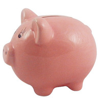 Mini Pink Piggy Bank