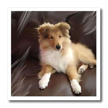 3dRose ht_4546_3 Rough Collie Puppy Iron on Heat Transfer for White Material, 10 by 10-Inch