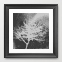 White Tree Framed Art Print by Deniz Erçelebi