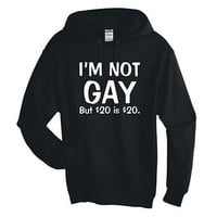 I'm Not Gay But $20  Is $20  Hoodie