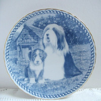Dog Plate Bearded Collie Collectible Plate Natalia Brampton Limited Edition  Aspects