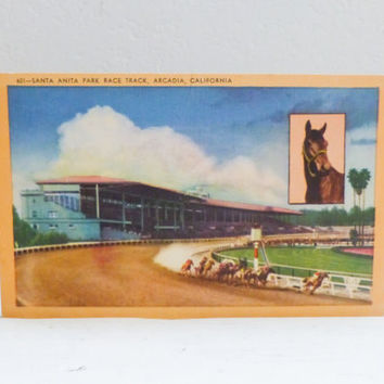 Travel Postcard, travel souvenir, Seabiscuit postcard, horse racing, santa anita, race track, vintage postcard, travel california, sports