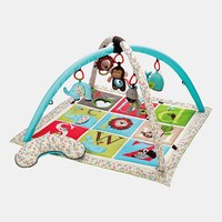 Infant Skip Hop 'Alphabet Zoo' Activity Gym