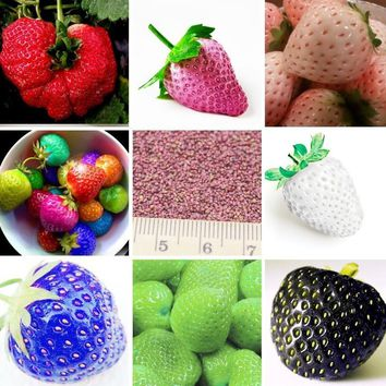 MXLUODX 10 Differents Of Nutritious Strawberry Seeds Fruit Seeds Vegetables Non-GMO Bonsai Pot DIY Home Garden Plants 200pcs