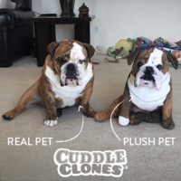 Plush Dogs and Cats of Your Pet | Cuddle Clones