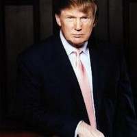 Donald Trump #1c - 16x20 Inches Photograph High Quality