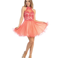 Coral Lace & Tulle Collared Short Dress