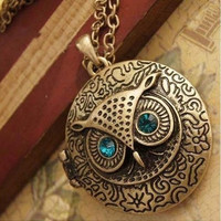 Fashion Jewelry Antique Bronze Blue Eye Owl Locket Retro Long Necklace Pendant = 1928804548