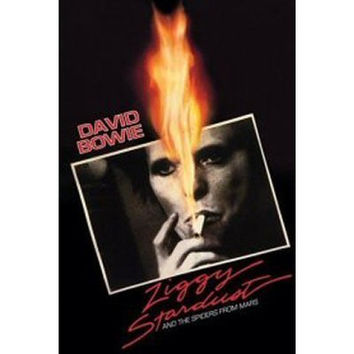 DAVID BOWIE POSTER Ziggy Stardust RARE HOT NEW 24x36