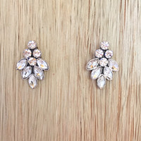 Taylor Rose Earrings