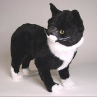 Manx Stuffed Cats by Piutre, Italy. World's Largest Source of Luxury Handmade Plush Lifesize Large and Lifelike Stuffed Animals