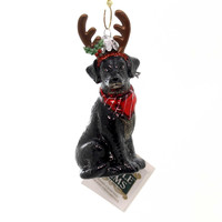 Holiday Ornaments DOG WITH ANTLERS ORNAMENT Christmas Puppy Nb1261 Blk Lab