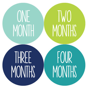Baby Boy Monthly Milestone Age Stickers Style #1053